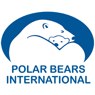Polar Bears Internaitonal